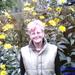 Moeke bij de zonnebloemen