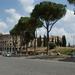 Colosseo 6