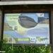 2010_07_24 Vierves-sur-Viroin 33 Olloy-sur-Viroin