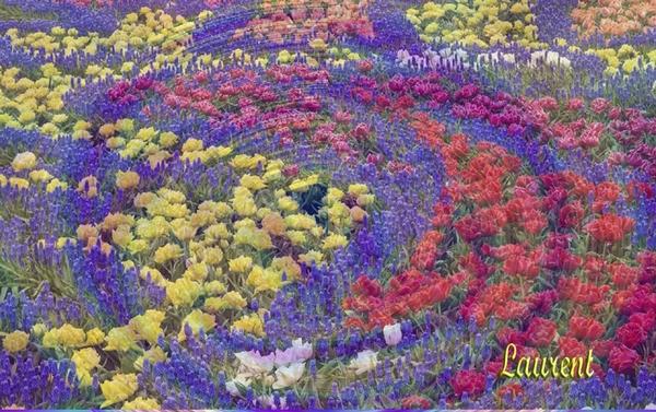 bloemencarousel