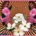 bloemenparade