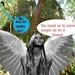 Engel op bezoek