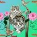 katten (2)