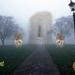 mysterie in de mist