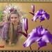 lilabloemen