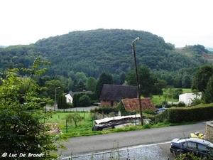 2010_08_29 Arbre 09