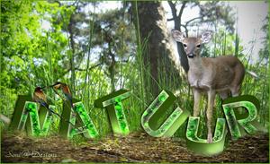 3d tekst natuur