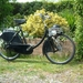 Berini M13 1958