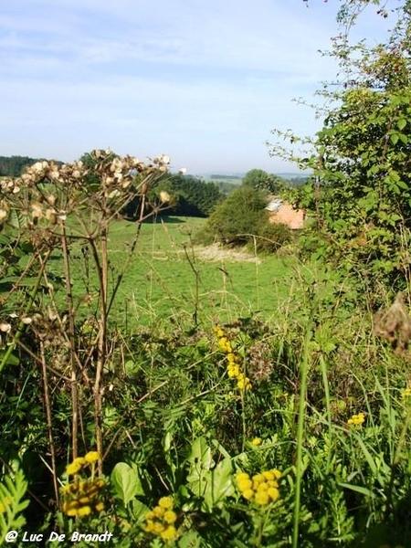 Ardennen wandeling Adeps