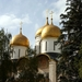 Kremlin-koepels kathedraal Maria ten Hemelopneming