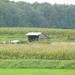 Weerterbergen Min 032