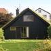 daken met gras bedekt