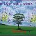 jarige van de week