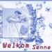 Welkom Senne