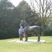 Beeld van een paard