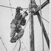 1966-03-22 Halve testen rode muts