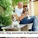Blog beaglelover