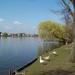 Donkmeer 05-04-09 004