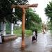 Anuradhapura - Op weg naar de heilige Bo-boom
