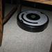 de Roomba Robot poetst het huis 017