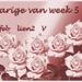 jarige week 5