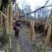 2011_02_13 Biesme 11