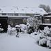 winter 2010 (3)
