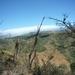 13 San Jose -- Monteverde _P1070693