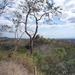 13 San Jose -- Monteverde _P1070694