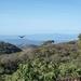13 San Jose -- Monteverde _P1070717 _Nicoya golf en schiereiland,