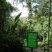 15 Monteverde, Selvatura park, hangbruggen _P1070731