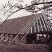 Schaapskooi met de gelgde dakpannen
