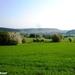 2011_04_17 Honnay 14