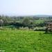 2011_04_17 Honnay 20