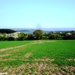 2011_04_17 Honnay 24