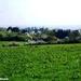 2011_04_17 Honnay 25 Sohier
