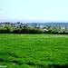 2011_04_17 Honnay 29 Sohier