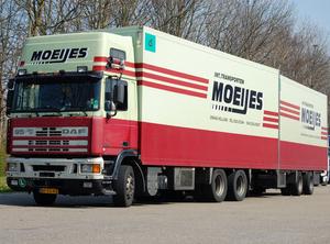 DAF-95 MOEIJES ZWAAGDIJK (NL)