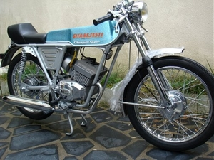 Gitane Testi Champion Super 1974