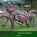 Derny Sport 1951