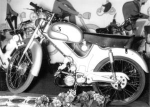 IMN. Paperino Sport 1956