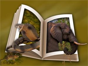 olifant en slang uit boek uitkader