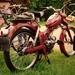 MS50V 1969