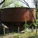 SCHAARBEEK BERM 20110407 (2)