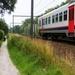 2011_07_10 Denderleeuw 028