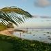 strand Tamassa