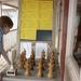 Groeps schaakprijzen