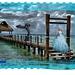 Dame met wapperende sjaal aan zee