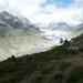 Aletschletsgletscher