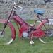 Coogan 1955